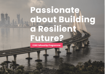 Coalition for Disaster Resilient Infrastructure (CDRI) Fellowship Programme