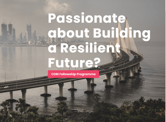Coalition for Disaster Resilient Infrastructure (CDRI) FellowshipProgramme